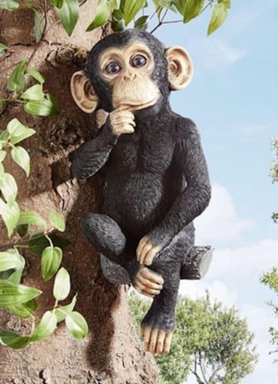 Gartendekoration Schimpanse Deko Balkon Terasse Haus Fruhling Tiere