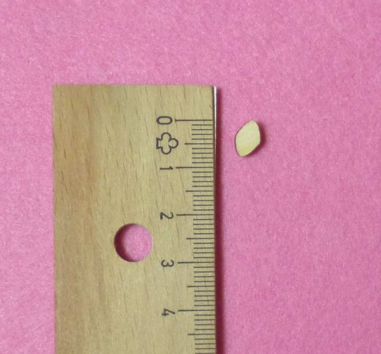 Buchstaben Zahlen aus Holz Kinderzimmer Basteln Türschild 21mm ...