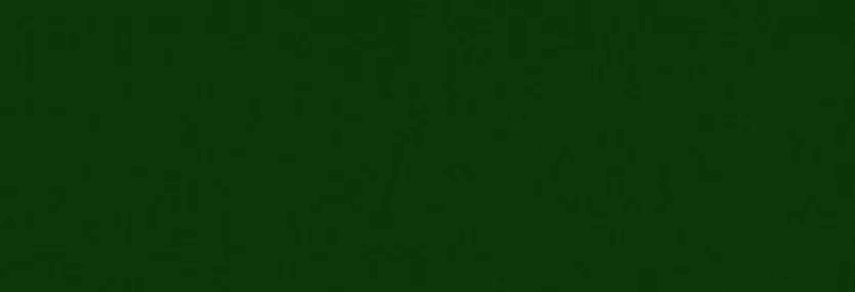 osmo landhausfarbe farbe 2404 tannengr n 0 75 l kaufen bei. Black Bedroom Furniture Sets. Home Design Ideas