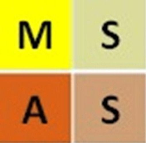 Zum Shop: MSAS-Stuttgart