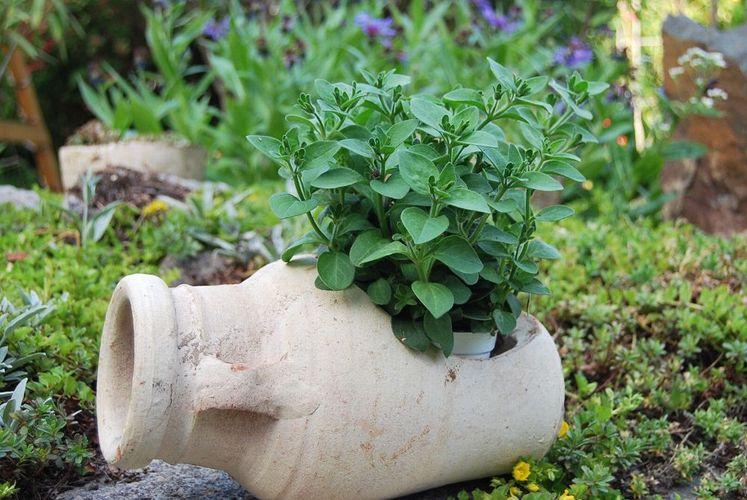 Romische Liegende Amphore Antike Krug Blumentopf Vase Aus