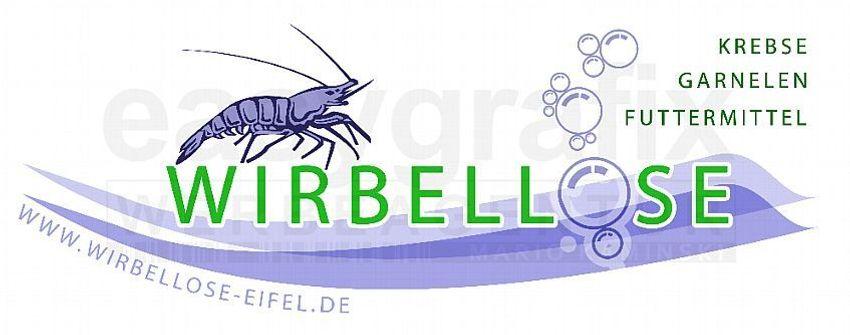 Zum Shop: Wirbellose-Eifel