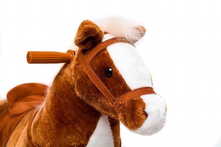 my ponyland