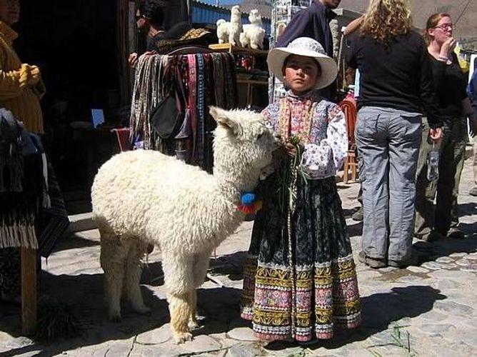 Zum Shop: Alpakaandmore, Ihr Shop direkt aus Peru
