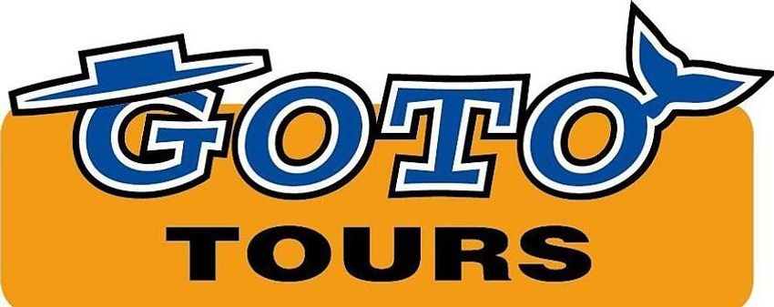 Zum Shop: goto-tours