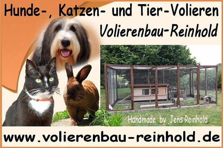 Zum Shop: Dog-Intelligenz