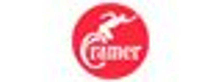 2St Cramer Häckslermesser Satz 3000,2600B,3000B,3700B orig
