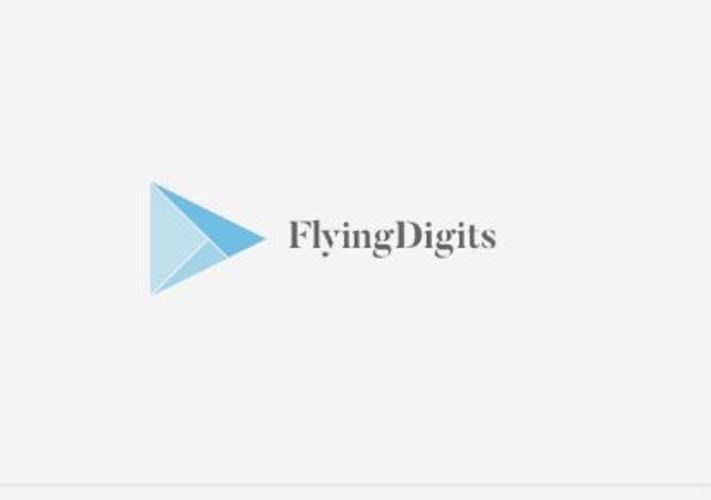Zum Shop: FlyingDigits