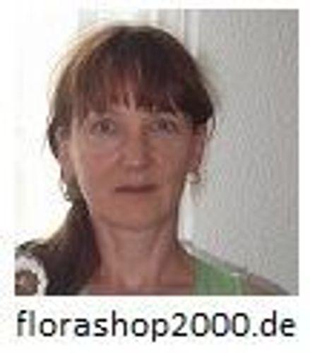 Florashop2000